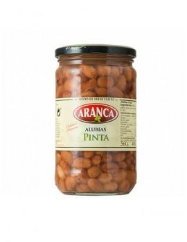 Mongeta Pinta